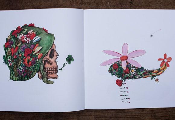 NM No35 illustrations